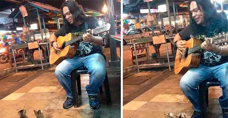 Ingen kom for å høre på gatemusikeren. Men så dukket 4 helt spesielle fans opp…