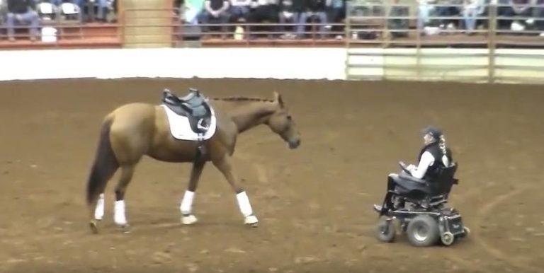 Hesten nærmer seg kvinnen i rullestol – Sekunder senere overrasker de publikum!