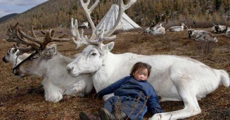 Fotografen oppsøkte en stamme – Han tok noen magiske bilder av stammens spesielle bånd til dyr