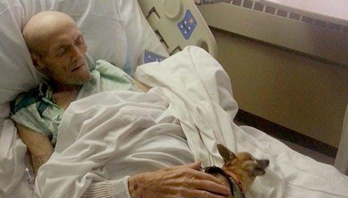 Den døende mannen hadde et siste ønske: Å se hunden sin en siste gang
