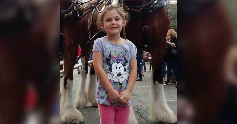 Pappaen skal ta bilde av datteren foran den store hesten. Resultatet er hysterisk morsomt!
